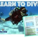 Incontro settimanale: lezioni teoriche di subacquea